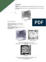 Example of Fingerprint Enhancement