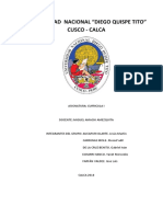 ultimo word curricula 1.docx