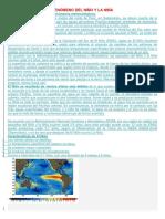 FENÓMENO DEL NIÑO Y LA NIÑA.docx