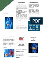 QUE ES LA HEPATITIS.docx