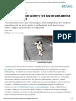 A Brutal Morte de Um Cachorro Vira-lata Em Um Carrefour Leva o Brasil Ao Divã _ Brasil _ EL PAÍS Brasil