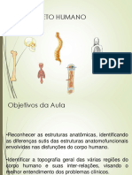 Sistema Osseo (1)