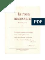 la rosa necessaria n. 11
