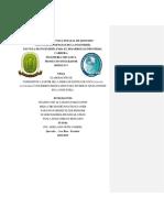 DOC-20190218-WA0041.docx