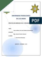 Trabajo de Practica Civil.docx
