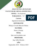Plantas-Cam.docx
