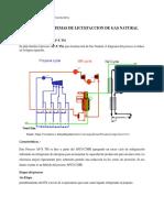 EJERCICIO Planta GNL.docx