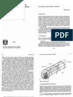 temazcal 1.pdf
