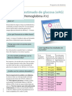 Quimica Clinica HE Diabetes Handout EAG Sp