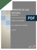 HIDRATOS DE GAS NATURAL....docx