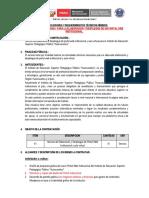 TDR PAGINA WEB ISPPEFH.docx