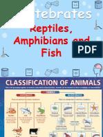 Reptiles, Amphibians & Fish Y3 (wecompress.com).pptx