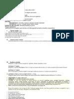 DIRIGENTIE plan iana (1).docx