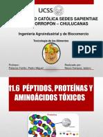 Peptidos Proteinas y Aminoacidos Toxicos