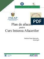 ANTUR Planul de Afaceri Model