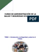CURSO DE ADMINISTRACIÓN DE LA SALUD Y SEGURIDAD OCUPACIONAL.pdf