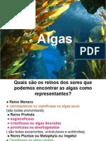 Biologia PPT - Algas I