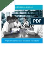 PROGRAMACIÓN CURRICULAR SECUNDARIA.doc