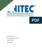PERLA-ENTREGABLE-FINAL.docx
