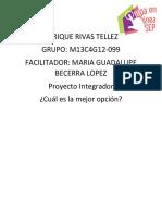 RivasTellez_Enrique_M13S4P.docx