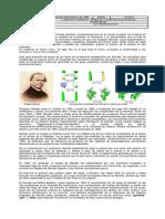 GUIA 02_noveno_Leyes de Mendel_2017.docx