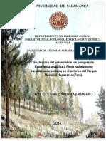 DBAPEEQA_CárdenasRengifoRC_BosquesCarbono.pdf