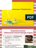 Biologia PPT - Aula 2 - Verminoses Platelmintos