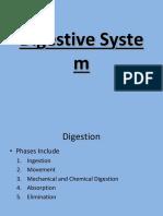 Digestive System PPT.pptx