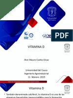 VITAMINA D.pptx