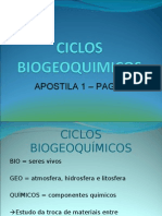 Biologia PPT - Aula 3 - Ciclos Biogeoquímicos