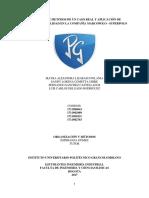INFORME ORGANIZACIÓN Y METODO.docx