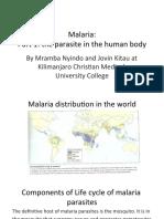 Malaria_DrMrambaNyindo.pdf