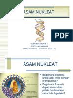 As. Amino Kelompok 1 k2-1