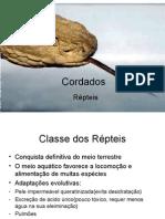 Biologia PPT - Aula 9 - Repteis