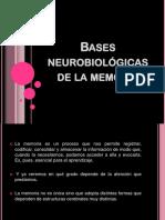 BASES NEUROBIOLOGICAS.pptx