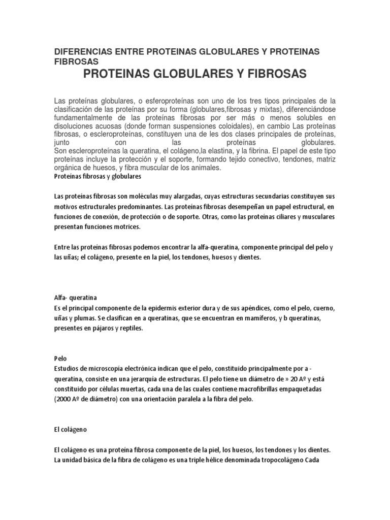 donde se encuentran las proteinas fibrosas y globulares