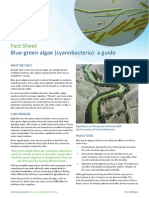 Cyanobacteria Guide