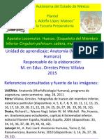 Morfofisiología humana.pdf