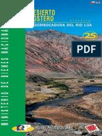 rioloa.pdf