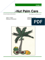 Betel-Nut Palm Care