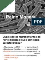 Biologia PPT - Maxi - Reino Monera