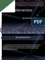 bioelentos