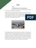 112803503-Botadero-Municipal.doc