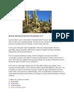 Cactus report.docx