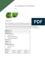 fitoterapi antioksidan-saila salsabila.docx