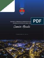 Raport de activitate al primarului Cosmin Necula 2018
