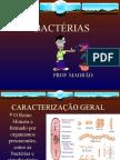 Biologia PPT - Reino Monera - Bactérias