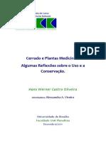 Cerrado e Plantas Medicinais - Algumas Reflexões Sobre o Uso e a Conservação