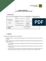 PSU REPASO.docx