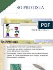 Biologia PPT - Reino Protista - Protozoários 2
